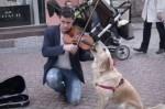 Пеещо куче - атракция в центъра на Пловдив (ВИДЕО)