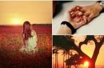 Любовта решава да умре