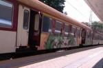 Цял вагон с мигранти разтревожи пътниците от влака Видин-София (ВИДЕО+СНИМКИ)