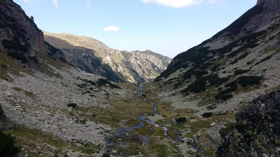 - Мальовица е името на връх в северозападната част на планина Рила. Върхът е висок 2729 м. Името на върха е свързано с Мальо войвода – борец срещу...
