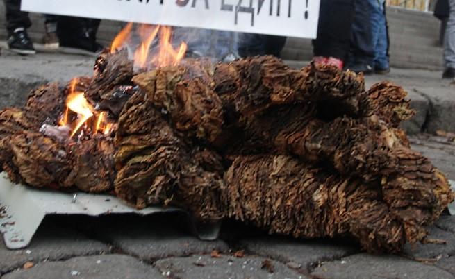 Тютюнопроизводителите продължават с протестите