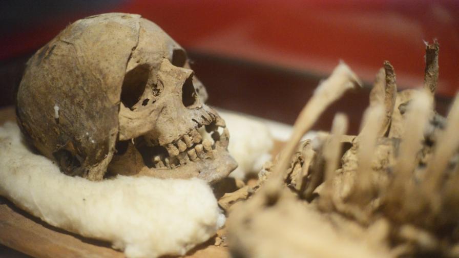 Откриха скелет на мъж, болен от рак отпреди 3200 години