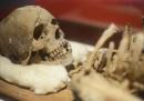 """Нови научни факти за """"прабабата на човечеството"""""""