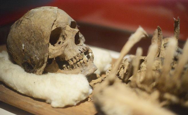 Първото предумишлено убийство на човек е отпреди 430 хил. години