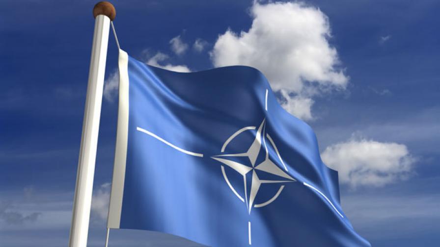 Парламентарната асамблея на НАТО прекратява комуникация с Русия