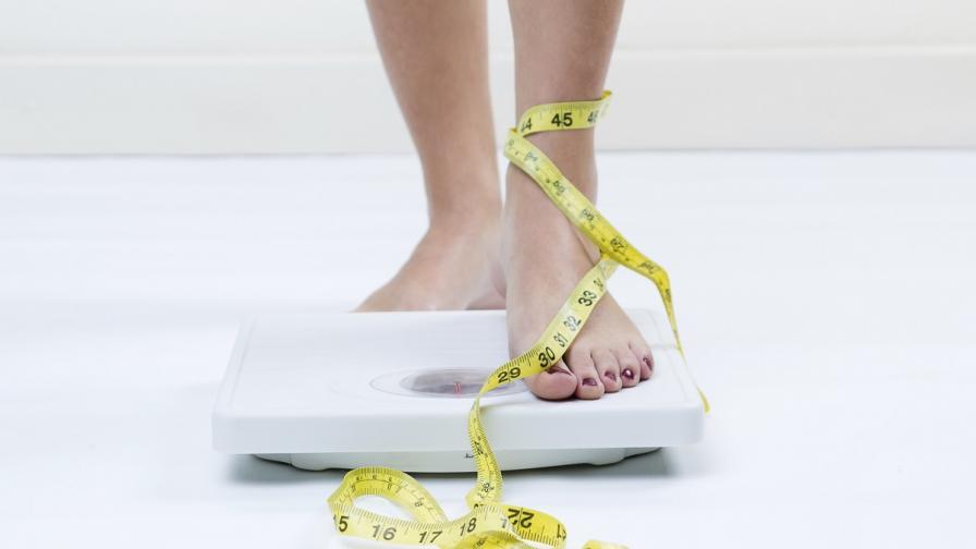 Учени определиха опасното за здравето увеличаване на теглото