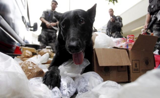 Задържаха 40 тона наркотици в Бразилия при военна операция