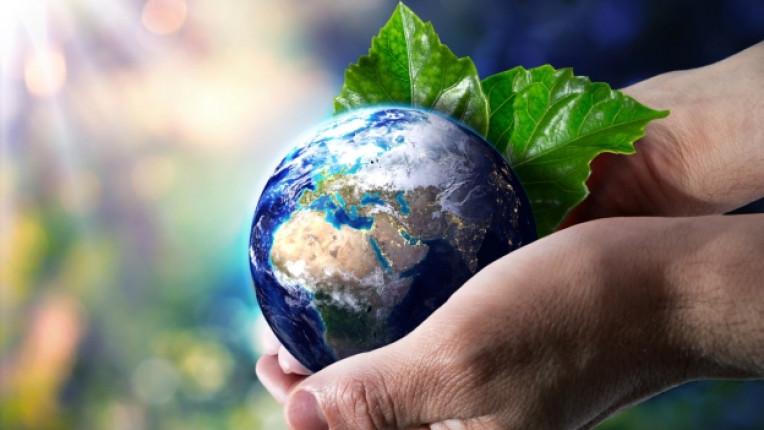 веган фестивал събитие здравословен природа хранене инсталация