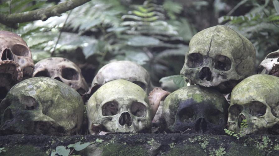 800 бебешки тела открити в масов гроб в Ирландия