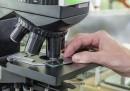 Учени алармират: Опасни супербактерии виреят в ЕС