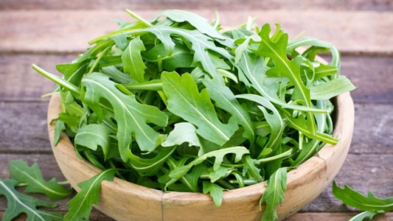 рукола токсини зеленчук салата витамин А фолиева киселина анемия