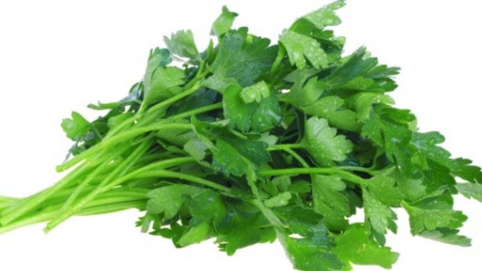 Магданозът е богат на витамин C и А, а също така съдържа солидни количества фосфор и желязо