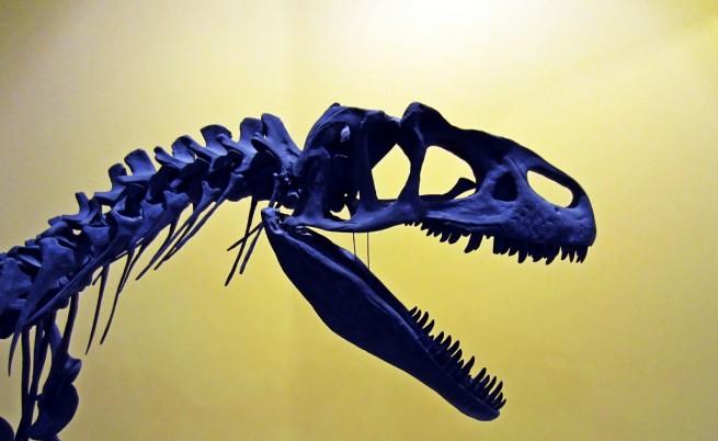 Откриха нов вид титанозавър на 100 милиона години