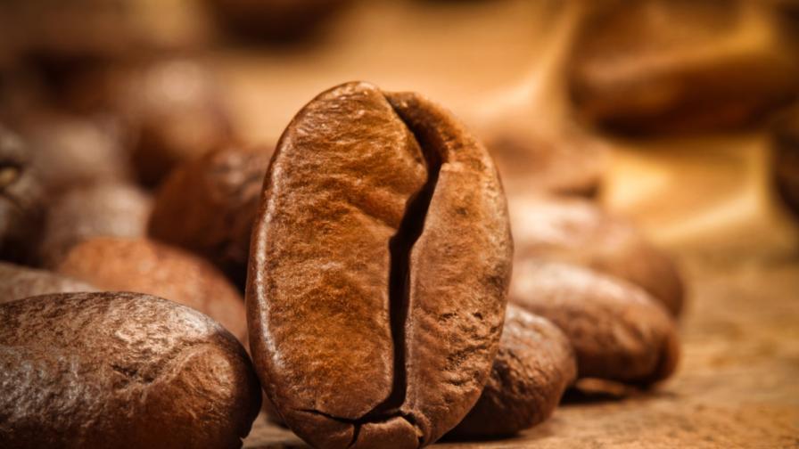 Разкриха генетичните тайни на кафето