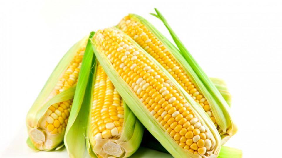 Как да си сготвим с царевица