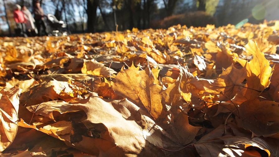 Още октомврийско слънце