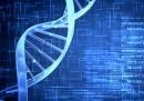 Учени записаха видео върху живи ДНК клетки