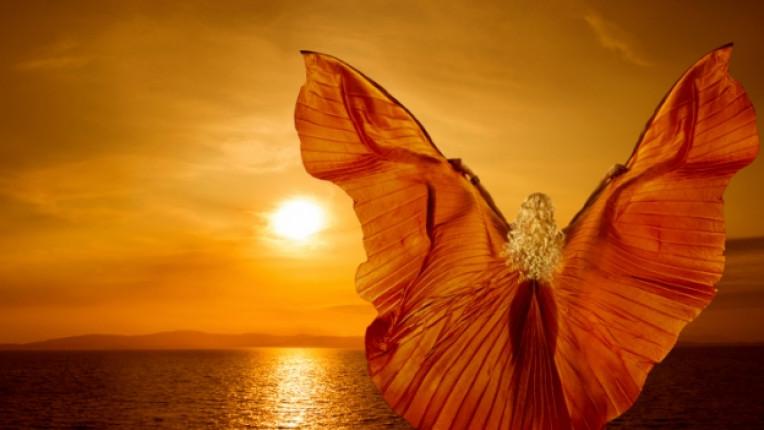 жена залез надежда рокля съдба живот