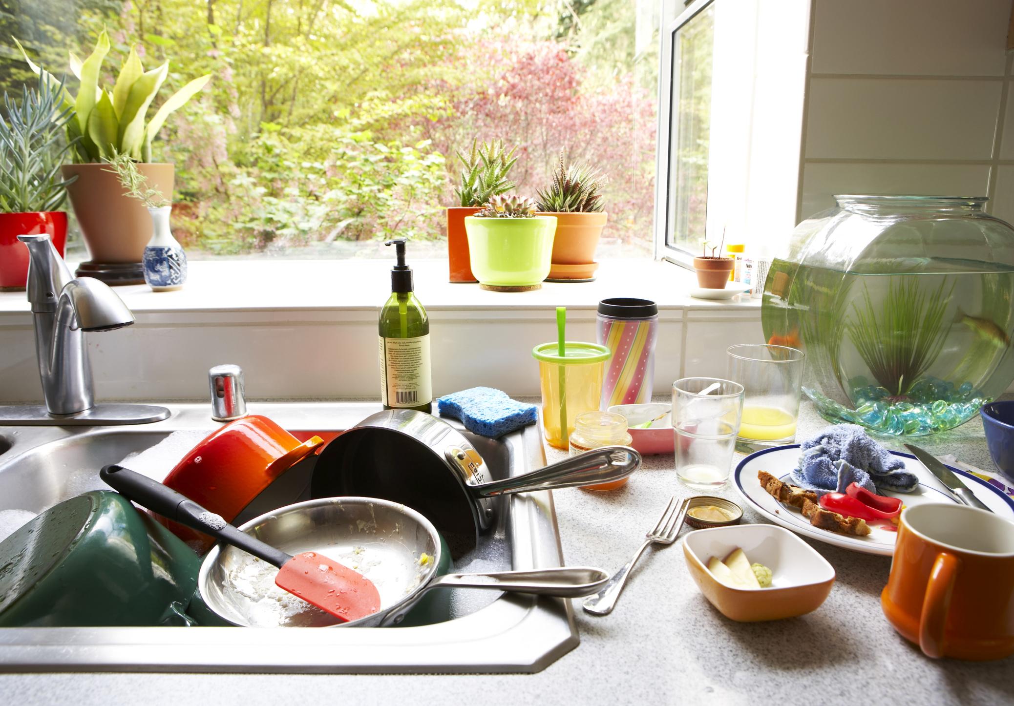 Никога не оставят мръсните чинии от закуска, обяд или вечеря. Винаги ги мият или оставят в миялната машина