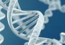 Биткойн маниаци пазят паролите си чрез ДНК