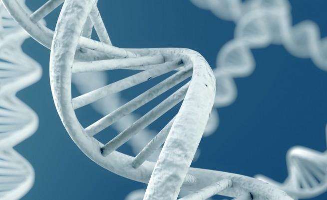 Китайски пробив в генетиката уплаши света