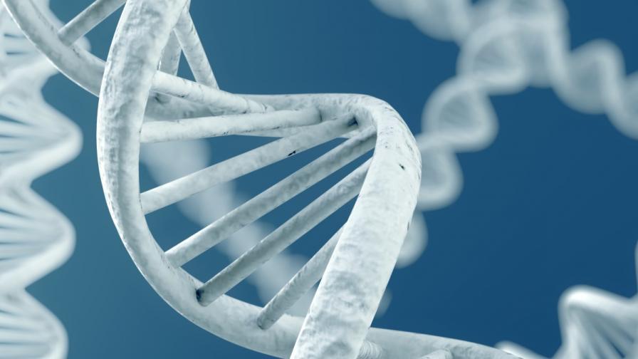 <p>Китайски пробив в генетиката уплаши света</p>