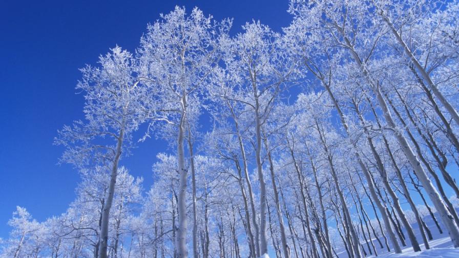 Максималните температури пак стават минусови