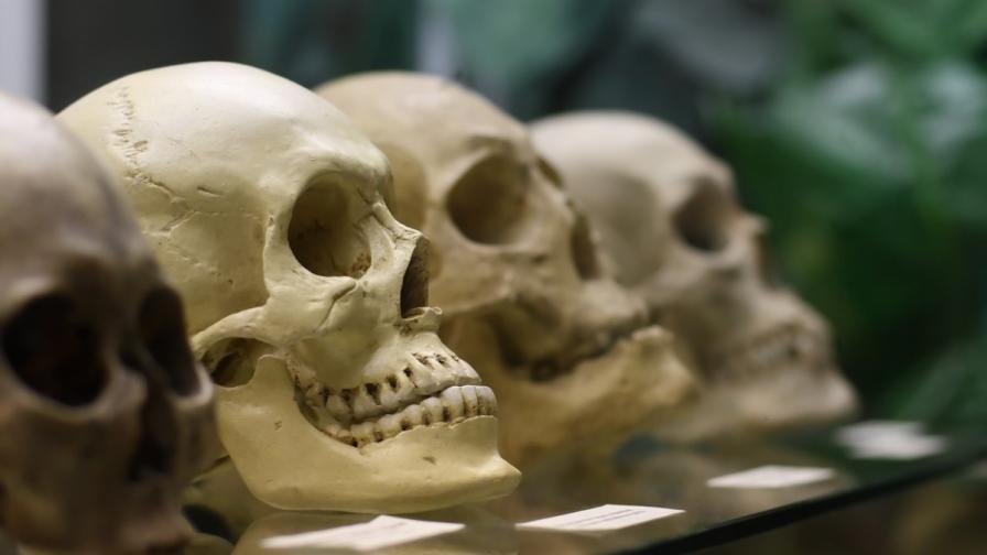 Откриха нов първобитен човек в Азия