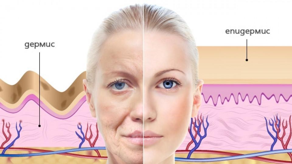 Подхранването отвътре възвръща еластичността и младостта на повехналата кожа