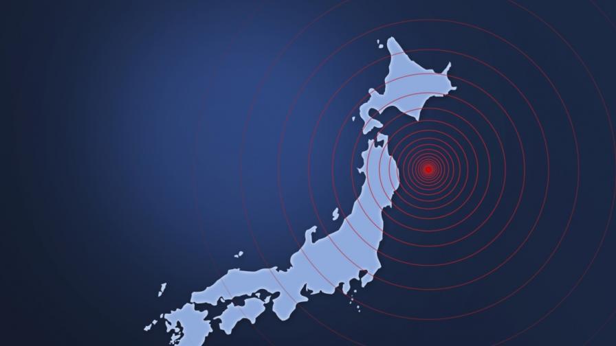 Специалисти са започнали да разработват морския радар след катастрофалното цунами на 11 март 2011 година, което опустоши североизточното крайбрежие на главния японски остров Хоншу и доведе до много жертви