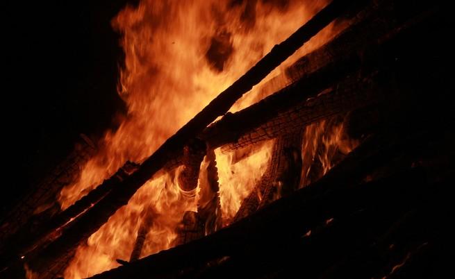 9521 дка са опожарените гори само за 14 дни