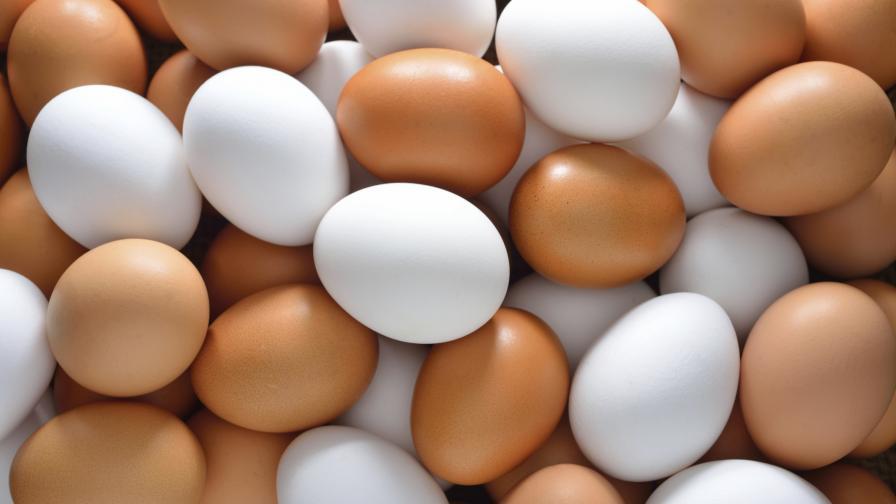 Изтеглят яйца със салмонела от българския пазар