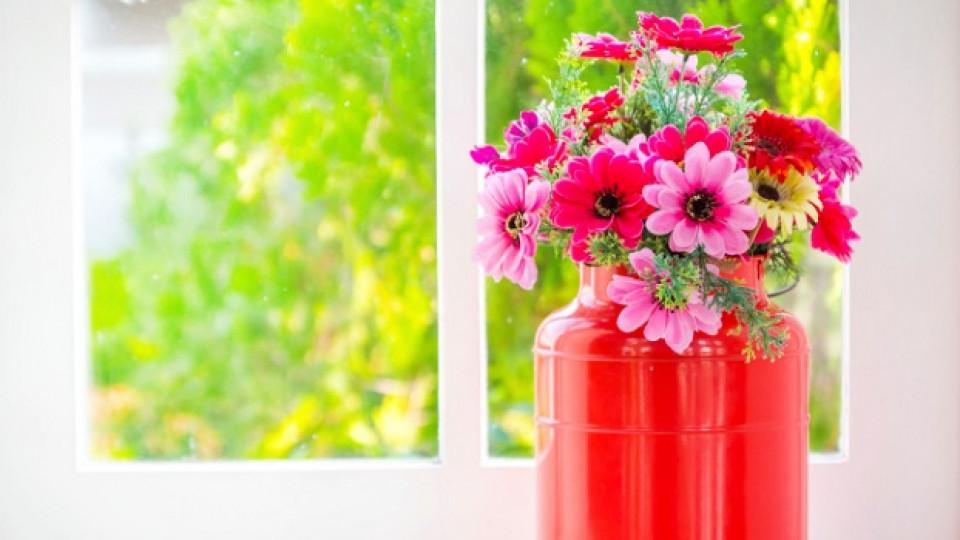 Как да запазите цветята свежи за по-дълго време