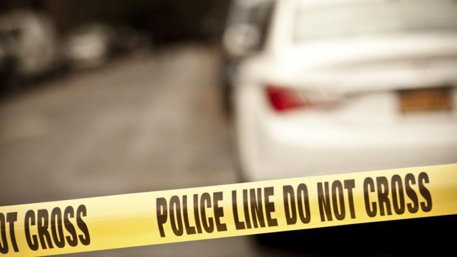 <p>Игра със замеряне с яйца завърши с убита жена в САЩ</p>