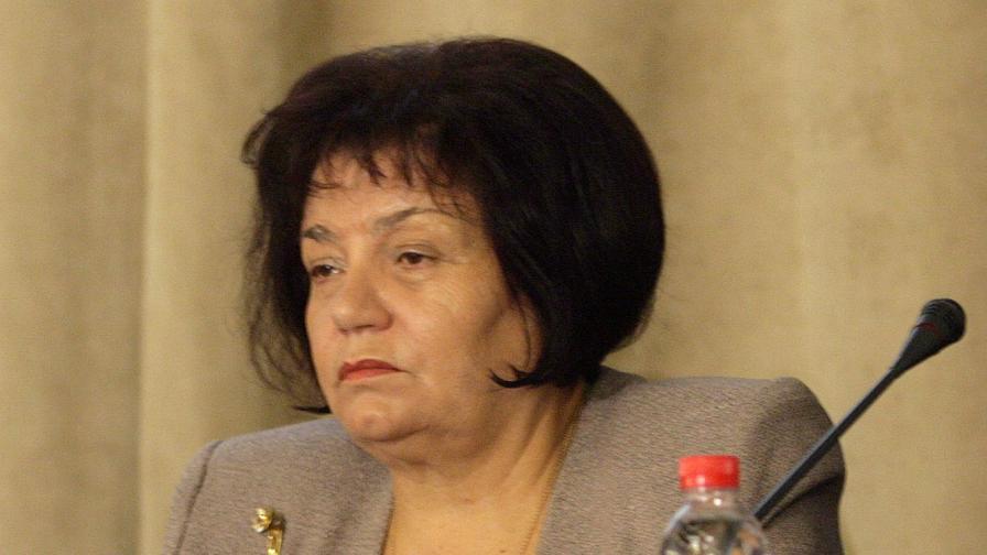 Янка Такева: Половината от ромските деца не ходят на училище