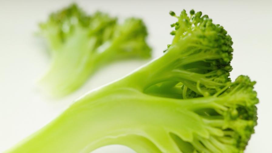 Защо децата мразят броколи? Най-накрая има отговор
