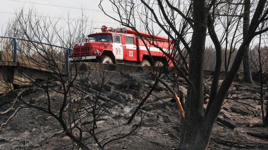 Горският пожар край Габрово отново се е разгорял