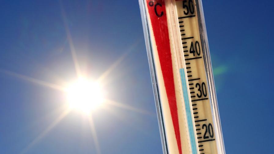 19 души умряха от жегата в Канада