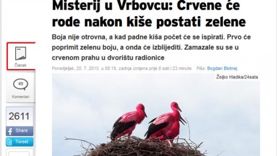 Червени щъркели станаха атракция в Хърватия
