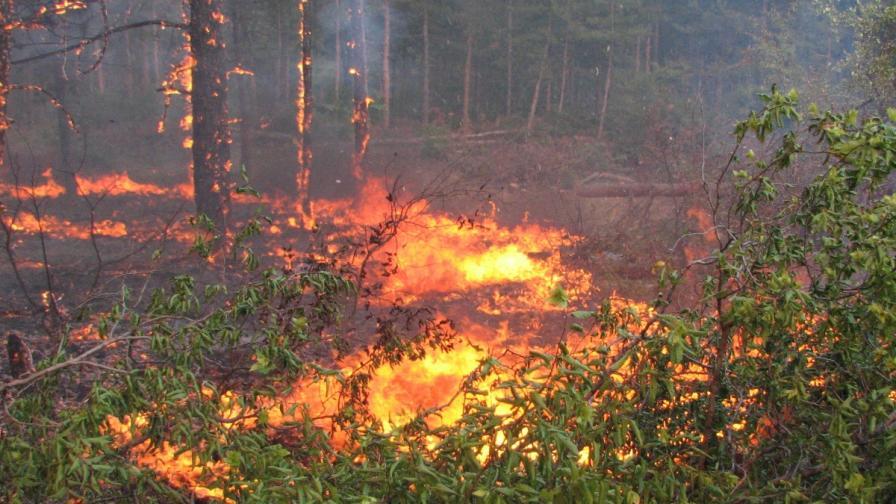 Пожарът в община Харманли е ограничен