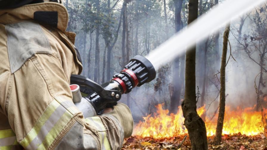 Пожар горя край Сопот