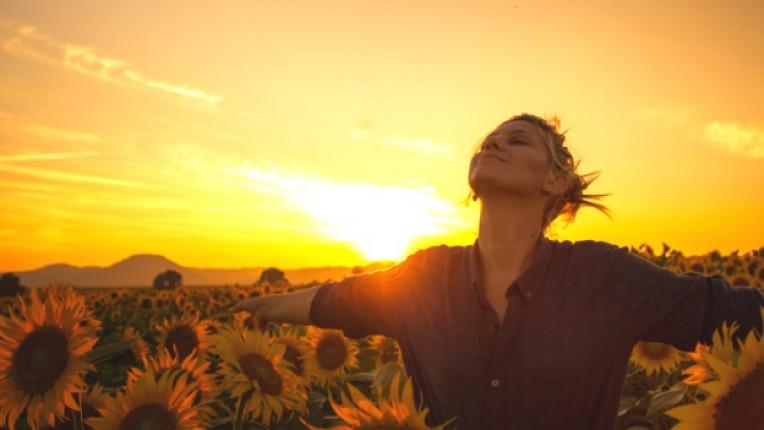 слънчогледи жена щастие