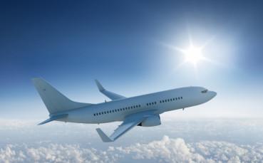 Няма да познаете кого видяха пътниците в нискотарифен полет
