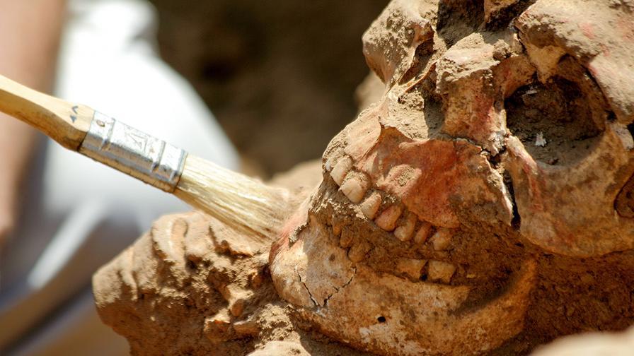 Учени откриха доказателство за праисторическо масово клане в Европа