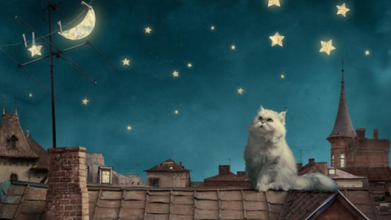 котка приказка анимация