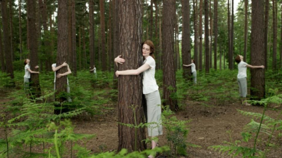 Терапия: Прегърни дърво