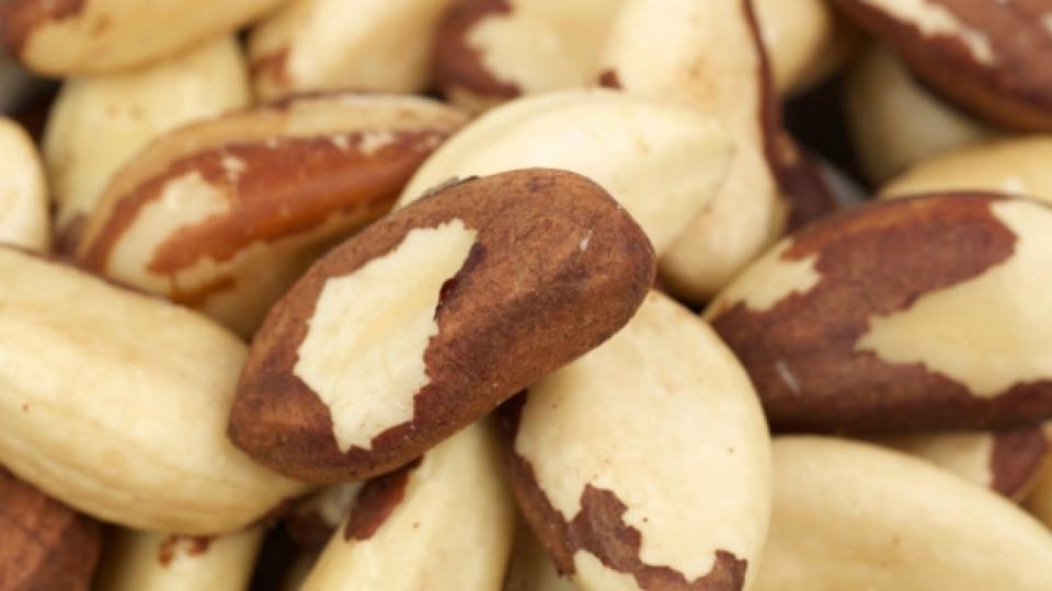 Бразилският орех, който всъщност е семе и идва от Боливия