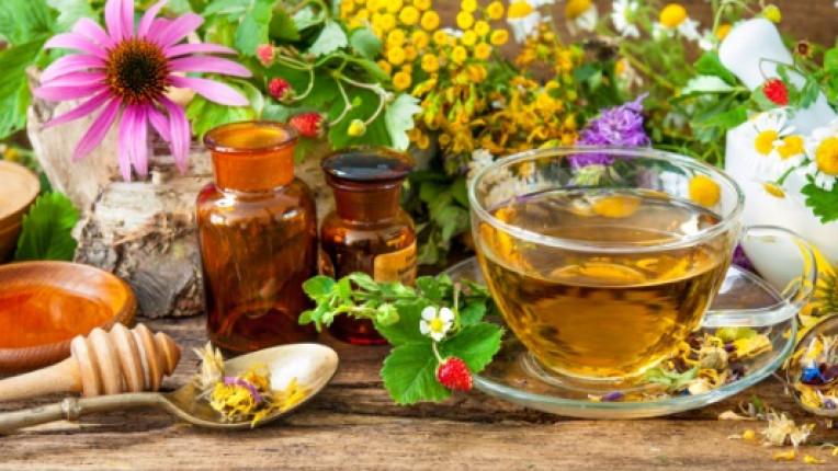 билки народна медицина мед здравословно билка здраве