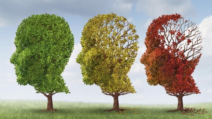Как да се предпазим от деменцията?