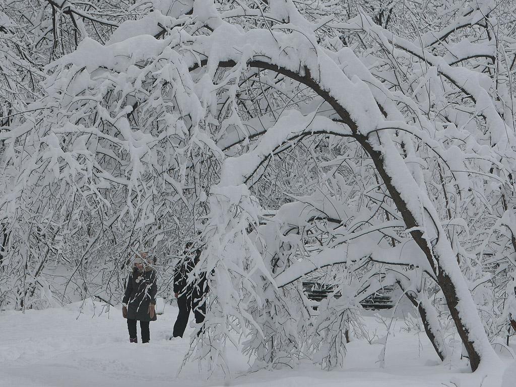 Истинската зима дойде